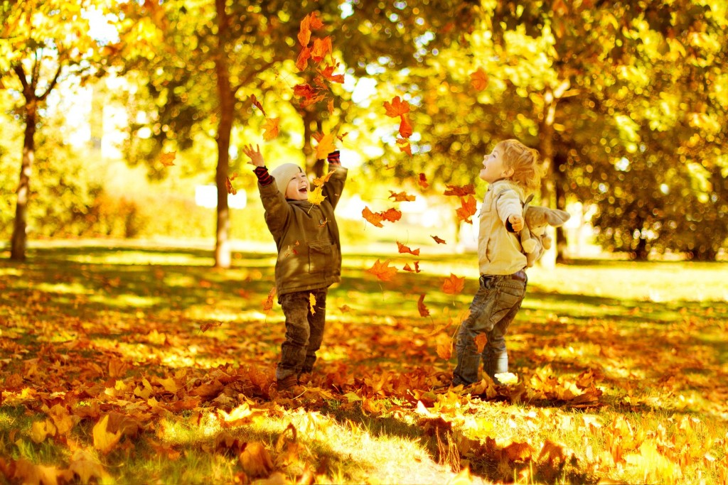 Fall Fun: Activities With Family And Friends « Weekly Sauce