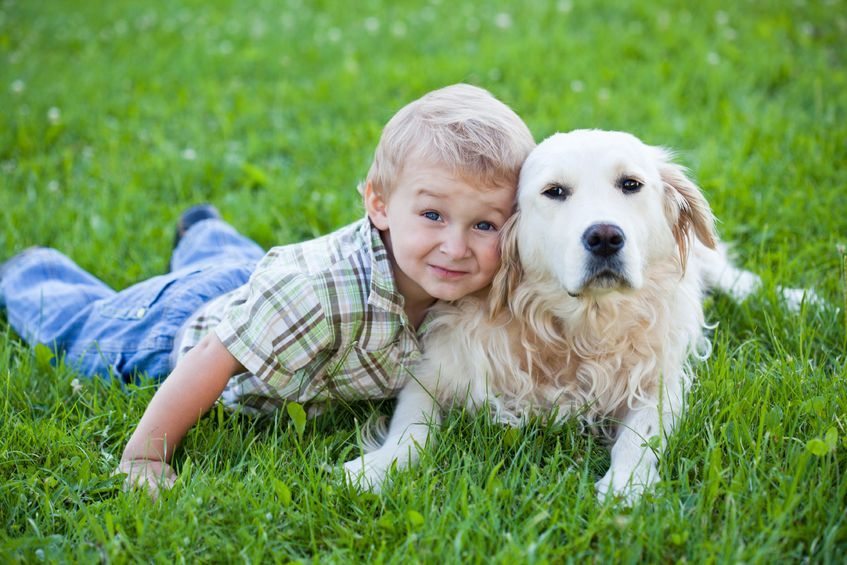 toddler and dog on grass