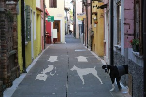 Footpath signposted for dogs and cats