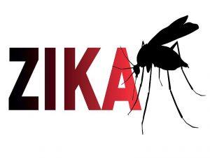 zika12